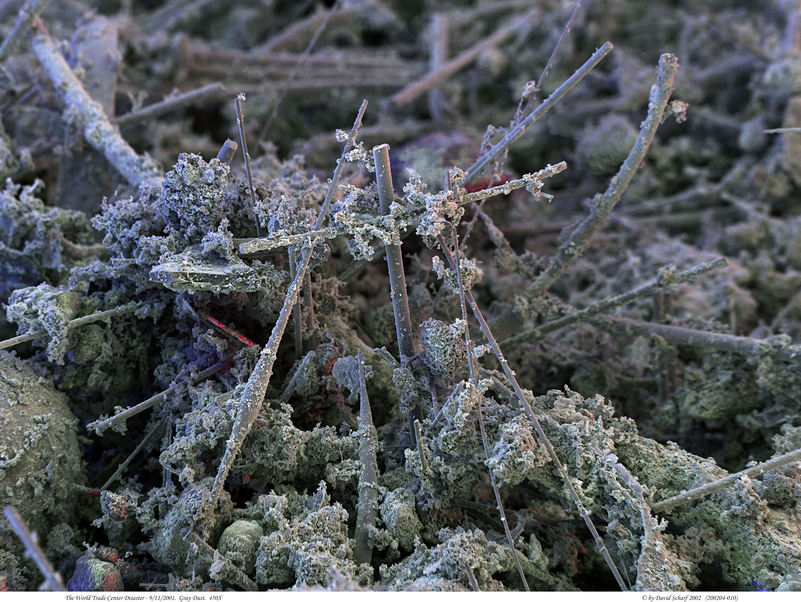 http://911throughoureyes.wordpress.com/tag/scanning-electron-microscope/
